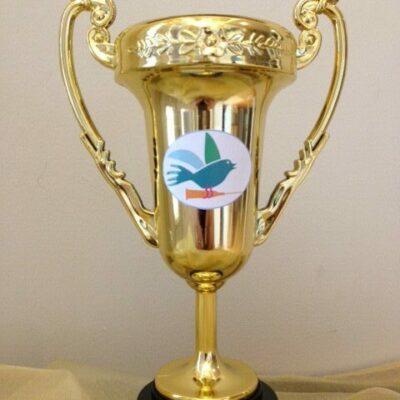 FTV Golden Cup